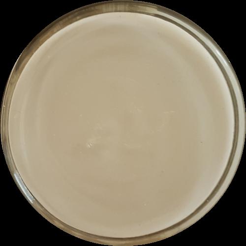 Schoencrème Ivoor - Schoensmeer Ivoor  - Shoe Cream Ivoor