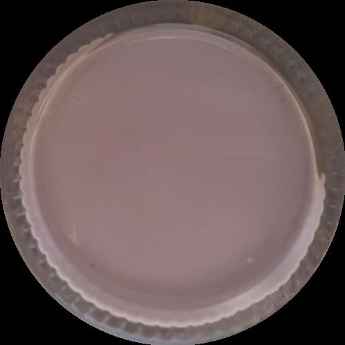 Schoencrème Magnolia - Schoensmeer Magnolia - Shoe Cream Magnolia