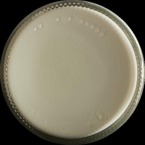 Schoencrème Kleurloos - Schoensmeer Kleurloos - Shoe Cream Kleurloos