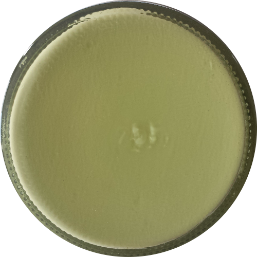 Schoencrème Appel Groen - Schoensmeer Appel Groen - Shoe Cream Appel Groen